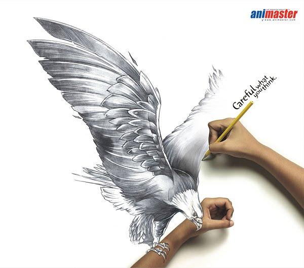 Wild Eagle o