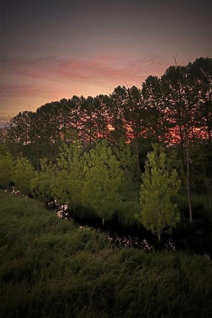 Fabulous Landscape Photos from Alex Tremps 63