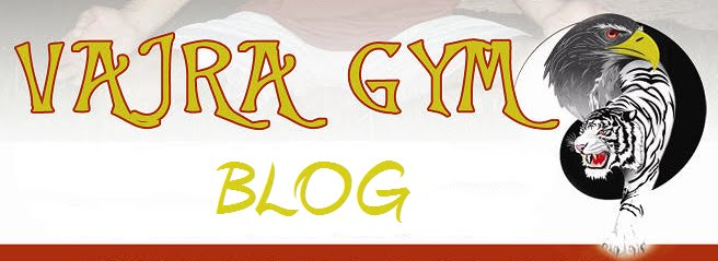 Vajra Gym blog