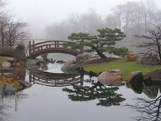 Scenes Of Japanese Park Tranquility Amazing Amp Funny