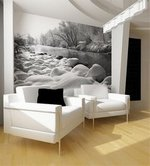 Wall Murals |  Photo Murals
