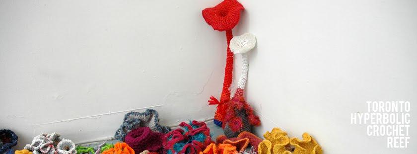 Toronto Hyperbolic Crochet Reef