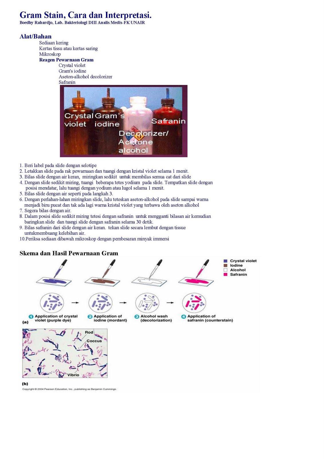 mikrobiologi untuk tehnisi kesehatan pewarnaan bakteri
