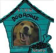 BTHM The dog house button