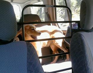 Pet Saver Car Seat