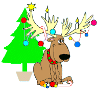 bad reindeer