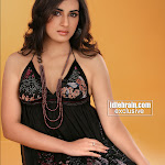 Sexy And Cute Archana The Tamil Actress Hot Photoshoot