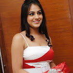 Tamil And Telugu Actress Aksha Masala Photos - Red White Dress
