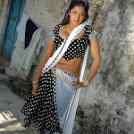 Tamil Aunties Sexy Hot Telugu Actress In Saree Pics