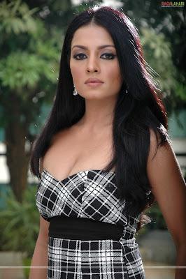 Desi Masala Hot Bollywood Actress Celina Jaitley