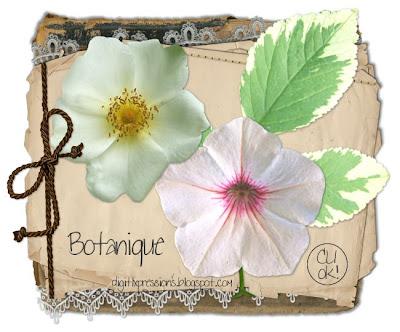 http://digitlxpressions.blogspot.com/2009/08/cu-botanique.html