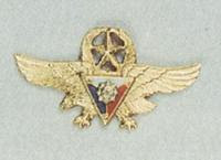 Gold Wing Badge