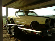 MUSTANG PROJECT 1966