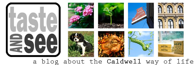 Taste and See: A Caldwell Blog