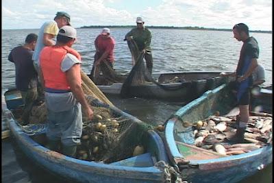 Crece en Camagüey la pesca acuícola