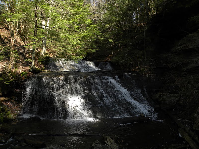 Hell's Hollow Falls - McConnells Mill