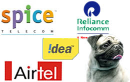 Telecom sector stocks outlook for 2010