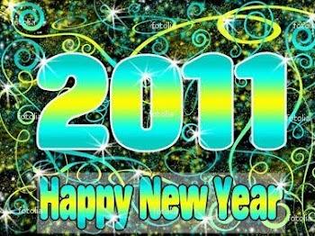 Happy New Year! Tahun baru 2011 !!