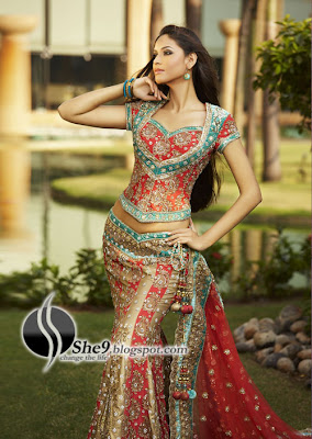 Indian bridal dresses anarkali embroidery designs she9 for Most expensive wedding dress in india