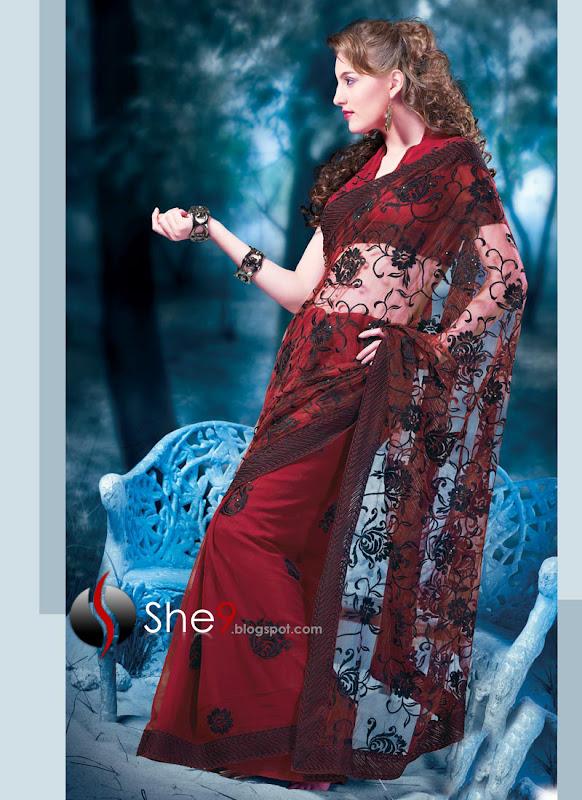 Indian Saree | Saree for Night Parties | Sarees of India 2010 title=