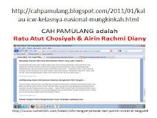 program kampanye airin rachmi diany 2011