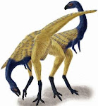 Limasaurus