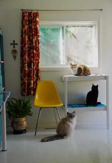 Pr ctico rbol de gatos para dormitar y salir al jard n for Como evitar los gatos en el jardin