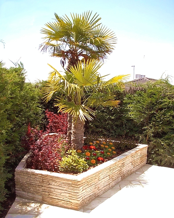 Superieur Great Palm Garden And A Perfect Modern Landscape