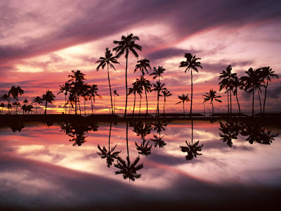 hawaii picture wallpaper. Hawaii Wallpapers part 2