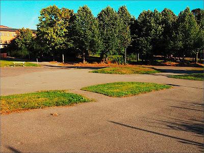 En bit gräsmatta i Skogås.
