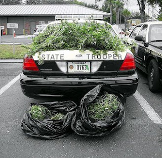looks like another weed bust from a Florida State Trooper that did nothing but drive the prices up
