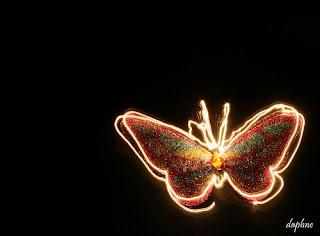 butterfly effect , kelebek etkisi , kelebek