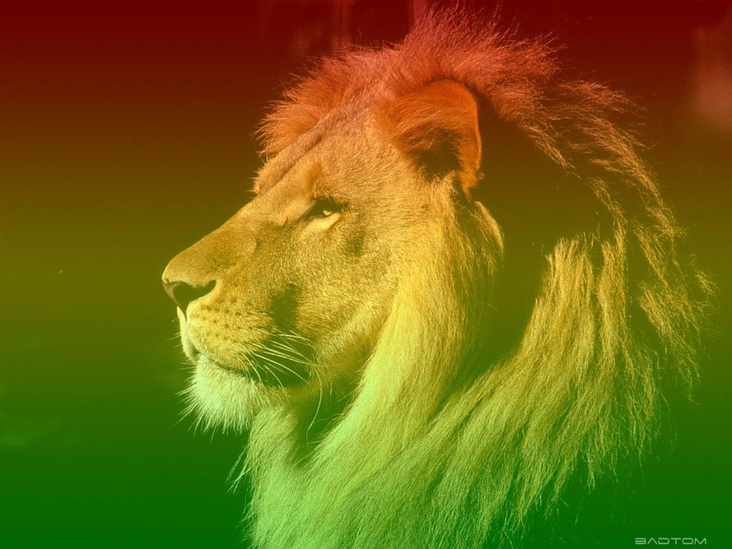 http://2.bp.blogspot.com/_8DBi5E6spD4/TJpU990uy8I/AAAAAAAAAaI/fJja95qPHS0/s1600/leao-reggae-badtom.jpg