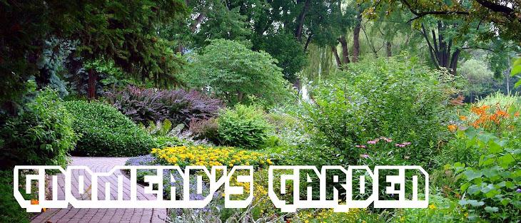 gnomead's garden