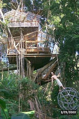Ellergy Tree Mendous Homes Part One 15 Unique Tree Houses