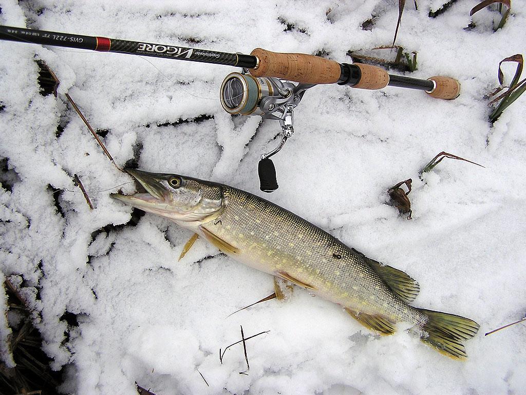 весенняя рыбалка на щуку апрель в кемерово