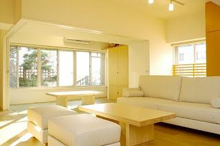 Minimalist Living Room Decoration