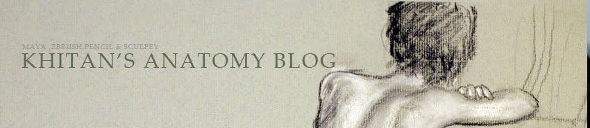 Khitan's Anatomy Blog