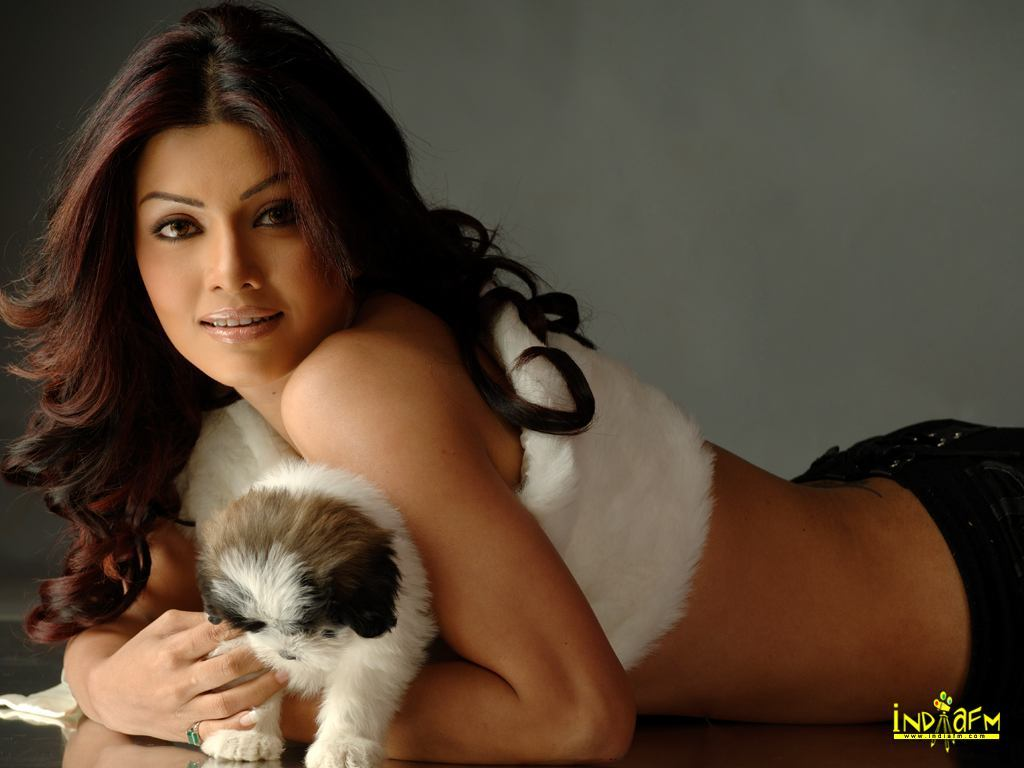 Hot bollywood and hollywood actress and model wallpaper: koena mitra