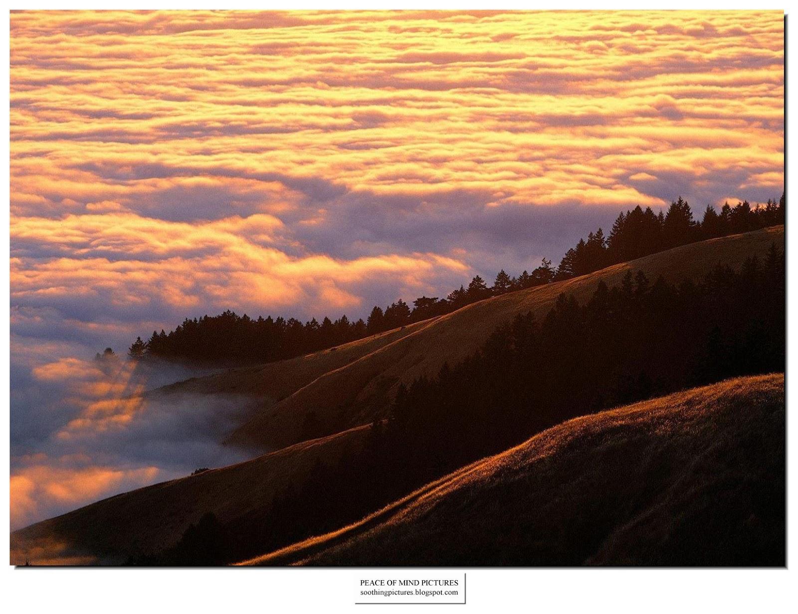 http://2.bp.blogspot.com/_8KMrX6Wq1ko/TLcUzX01E2I/AAAAAAAAH6E/Qktu1v5iGEg/s1600/peace-of-mind-pictures-fog-009.jpg