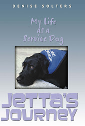 Jetta's Journey Book Cover