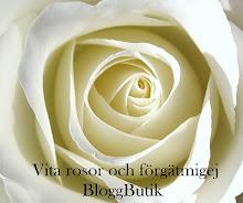 Mysig bloggbutik