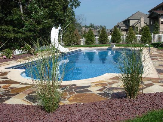 Plantas para decorar la piscina dise o y decoracion de for Patios con piscina decoracion