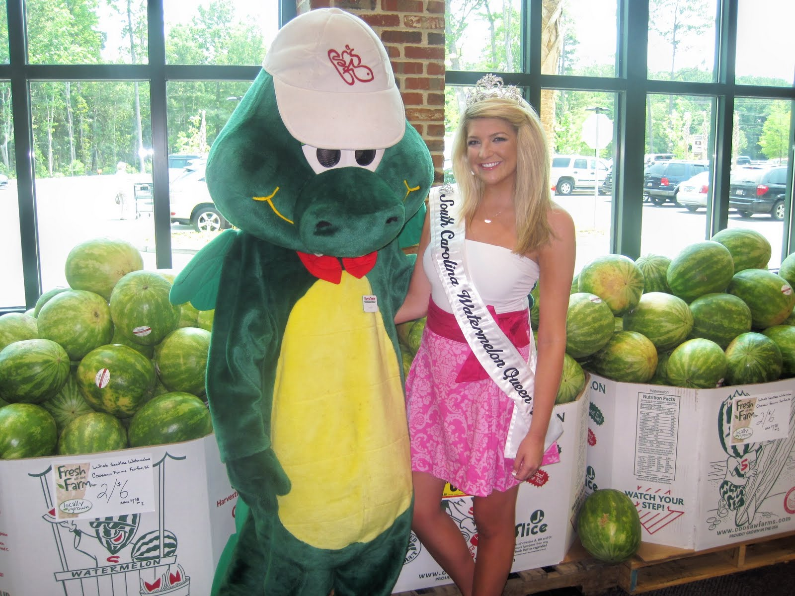 SC Watermelon Queen 2010: Harris Teeter Grand Opening ... Harris Teeter Dragon Logo