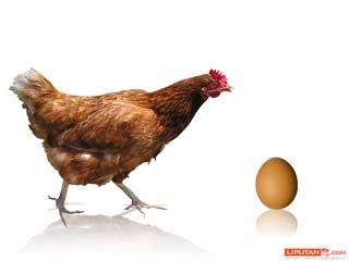 Duluan Telur Atau Ayam Sudah Terjawab
