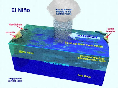 the effects of el nino the irregular warming of the sea surface A warming of the ocean surface, or also known as above-average sea surface temperatures (sst), in the central and eastern tropical pacific ocean occurs during enso over indonesia, rainfall is reduced while rainfall increases over the tropical pacific ocean.