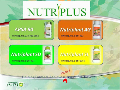 Nutriplant Organic Fertilizer