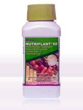 Nutriplus Nutriplant SD Seed Nutrient
