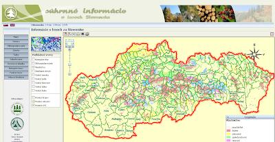 Forest Slovakia