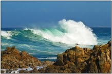SLIDESHOW - Monterey